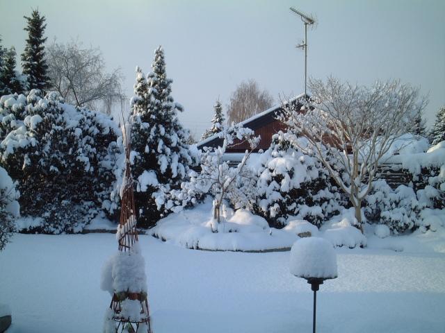 Tung sne bør forsigtigt skubbes ned fra stedsegrønne planter, da grenene ellers kan brække af.