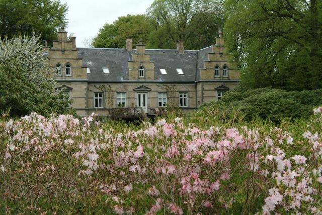 """Foran slottet og søen findes en 50 m lang beplantning med R. schlippenbachii. """"Hækken"""" blomstrer i april."""