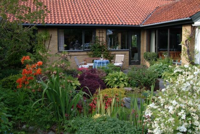 En hyggelig og nem have, tilplantet så der ingen plads er til ukrudtet.
