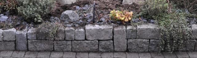 November kan være en fin måned at komme på forkant med forårets anlægsarbejde.