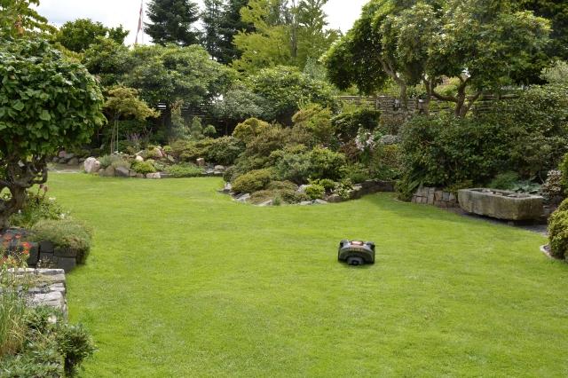 Velklippet og frisk grøn er græsplænen som vi ønsker det. Den giver ro til øjet, og er havens samlende element. Og det helt uden arbejde!