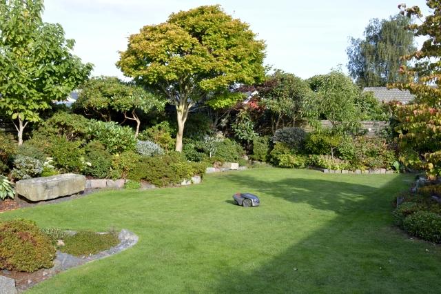 Efter et par ugers ferie kommer man hjem til en velplejet græsplæne - ja, altså når man har en Husquarna græsrobot! (medio sept. 2016)