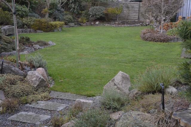 """Den 30.11.2016 er BB8 for længst kommet på vinterferie Plænen fremstår meget flot. Det kan ikke se direkte på billedet, men tro mig, der er SLET INGEN MOS. Plænen er gødet som normalt, et par gange i løbet af sommeren, men den daglige afslåning af ganske korte dele græsstrå, har både gødet, men også giver luft til græsrødderne, fordi græsset aldrig er blevet langt og """"skyggende""""."""