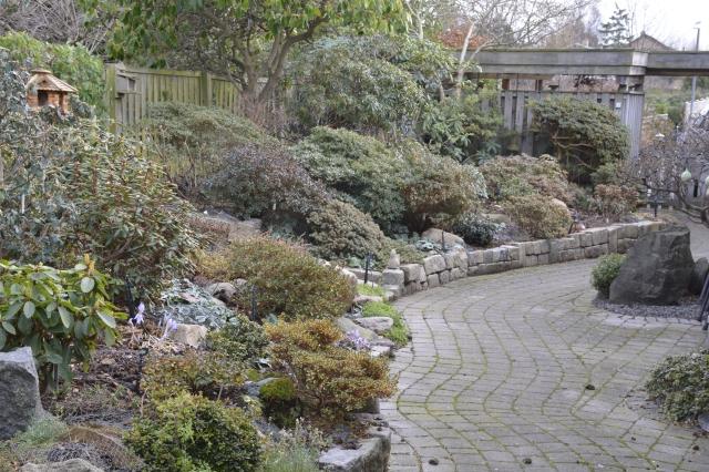 Vores indgangsparti er altid varierende grønt. Endnu i disse dage er der blomstrenende efterårskrokus i små farvespots.